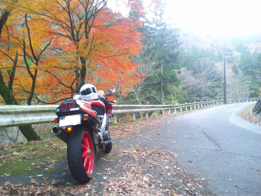 秋のVFR400R【NC30】